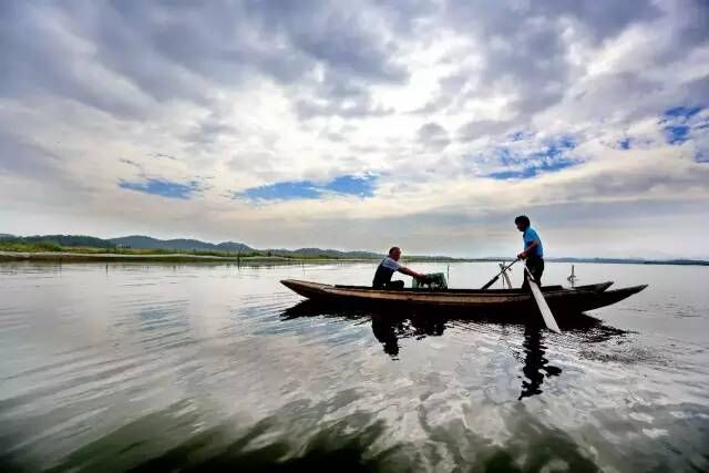 白泥湖国家湿地公园总面积1195.2公顷